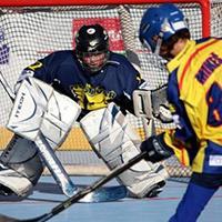 V OC Europark bude pořádný hokejbal